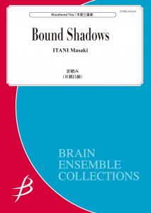 Bound Shadows