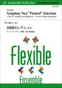 Symphony No. 6 Pastoral Selections